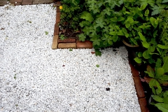 Deze voortuin ligt op het noorden, het witte grind maakt de tuin lichter en het plaatsje is beter waterdoorlaatbaar