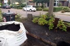 1 kuub biologische grove compost besteld en in de borders gemengd met de tuinaarde (zeer zanderig).
