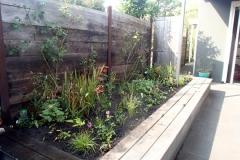 Verhooge borderbak achter met mix van zonminnende planten.