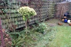 In deze tuin gaan we het terras in de hoek veranderen in een plantenborder.