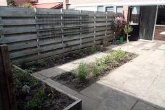 Ook de doornloze braam is geplant