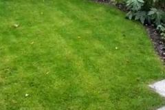 Deel wordt gras voor spelen en relaxen.