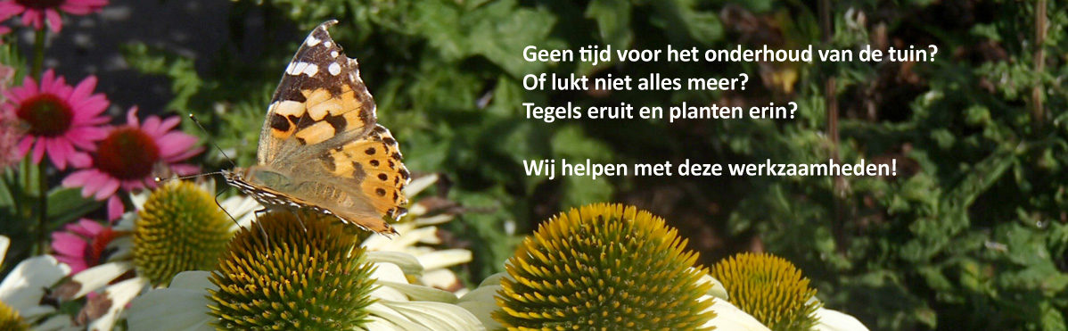 Tuinvrouwen Alkmaar